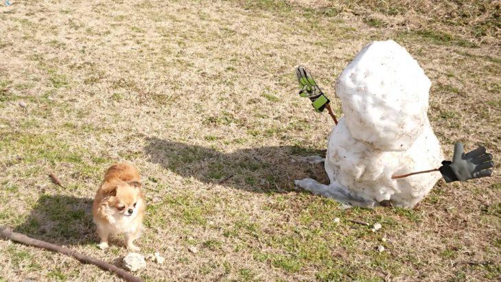 雪解け。取り残されたゆきだるま